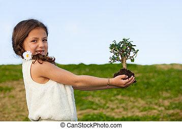 albero, concetto, invironment, natura