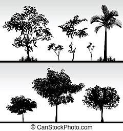 albero, erba, silhouette