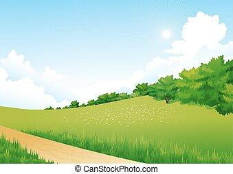 albero, fiori, paesaggio, verde, nubi