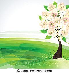albero flowering