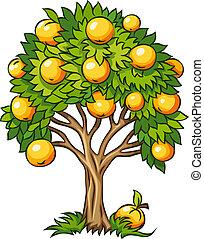 albero frutta, isolato