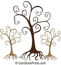 albero genealogico, facce