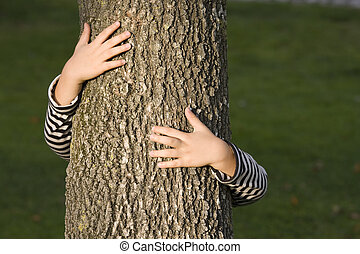albero, huging