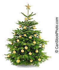 albero, lussureggiante, ornamenti, oro, natale