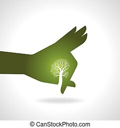 albero, mano