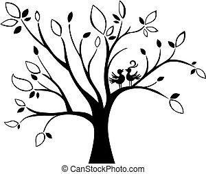 albero, matrimonio