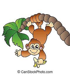 albero, palma, scimmia, appendere