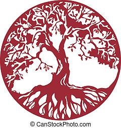 albero, quercia
