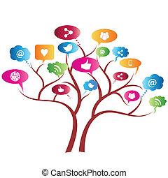 albero, rete, sociale