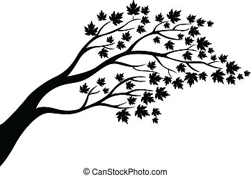 albero, silhouette, acero