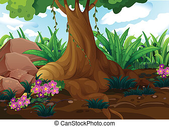 albero, vecchio, giungla