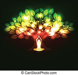 albero, yoga