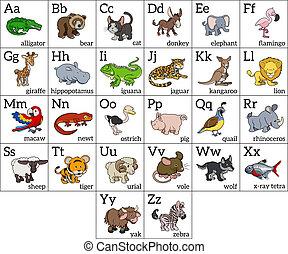 alfabeto, cartone animato, animale, grafico