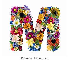 alfabeto, fiore, -, m