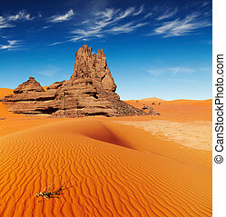 algeria, deserto, sahara