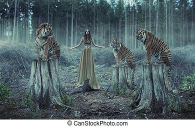 allenatore, tigri, attraente, femmina