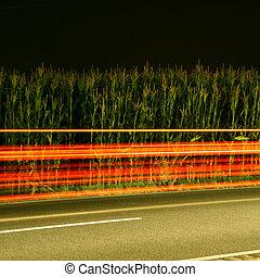 alto, automobile, velocità, notte