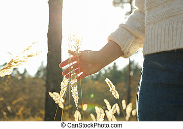 alto, testo, donna, spazio, piante, secco, foresta