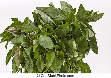 amaranth, congedi verdi, mazzo