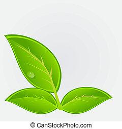 ambientale, vettore, plant., illustrazione, icona