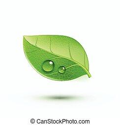 ambiente, concetto, verde, icona