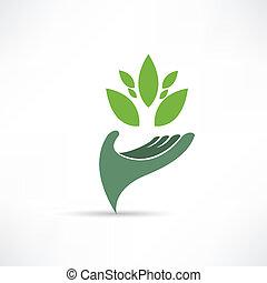 ambiente, ecologico, icona