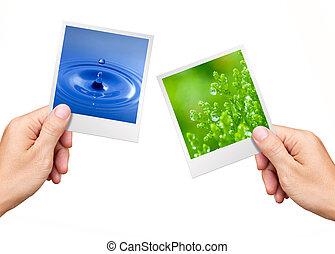 ambiente, pianta, natura, concetto, acqua, foto, tenere mani