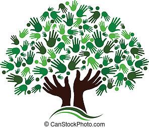 amicizia, collegamento, albero, image.