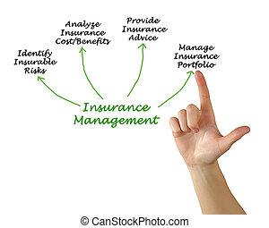amministrazione, assicurazione