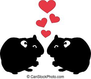 amore, due, criceto