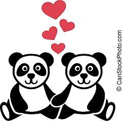 amore, due, pandas