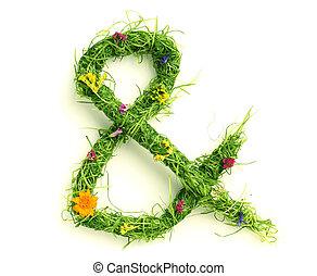ampersand, fiori, fatto, erba