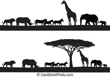 animale, safari, silhouette