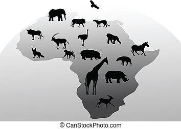 animale, silhouette