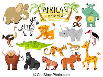 animali, isolato, illustrazione, fondo., vettore, collezione, africano, bianco