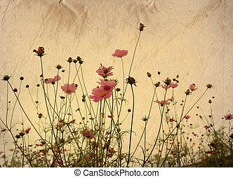 antiquato, fiore, artistico