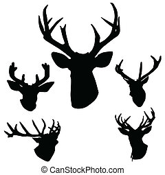 antlers, cervo, silhouette