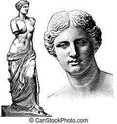 aphrodite, vettore, statua