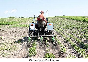 apparecchiatura, agricoltura, trattore, speciale, erbaccia