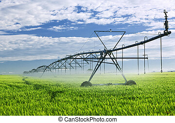 apparecchiatura azienda agricola, irrigazione, campo