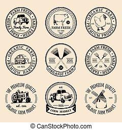 apparecchiatura, vettore, sketched, agricolo, fresco, vendemmia, mano, logotypes., set, retro, etichette, fattoria, illustrations.