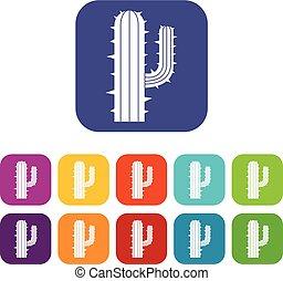 appartamento, set, cactus, messicano, icone