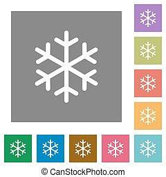 appartamento, singolo, quadrato, fiocco di neve, icone
