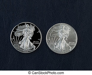 aquila, uncirculated, monete, dollaro, americano, argento, prova