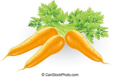 arancia, fresco, carote, saporito, illustrazione