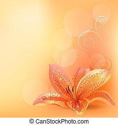 arancia, pastello, giglio, fondo, luce