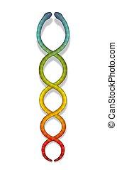 arcobaleno colorato, serpenti, kundalini, simbolo, serpente