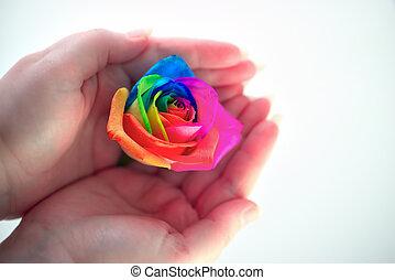 arcobaleno, dita, fra