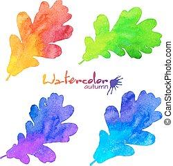 arcobaleno, set, dipinto, foglie, quercia, acquarello, colori