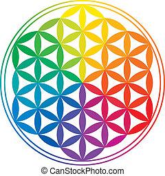 arcobaleno, vita, fiore, colori